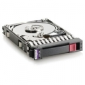 HD HP 300GB 10K SAS 2.5 DP HDD***Stk limitato***